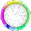 Ciliate SSU-rDNA reference alignments ...